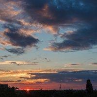 Летний вечер :: Дмитрий Кузнецов