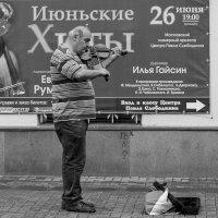 Июньские хиты. :: Александр Степовой