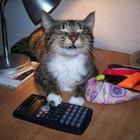 Улыбка Чеширского кота :: Лара Leila