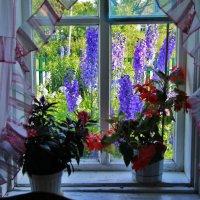 обычный вид из окна в деревне. :: Вадим Виловатый