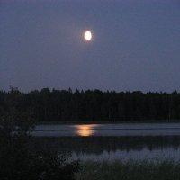 Луна. :: Галина .