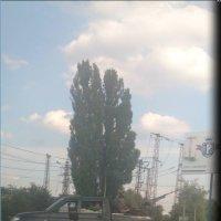 Донецк сегодня(( :: Анастасия Барыльникова