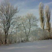зима :: natali