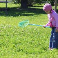 Ловля бабочек -дело серьезное.... :: Tatiana Markova