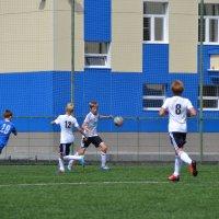 Игра в защите :: Sergey Волков