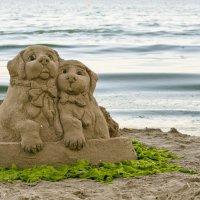 Песчаные собаки :: Александр