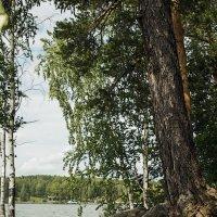 озеро Таватуй.. :: Надежда Шемякина