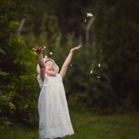 белые лепестки :: Сильвия Михеева
