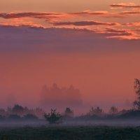 У рассветных облаков... :: Roman Lunin