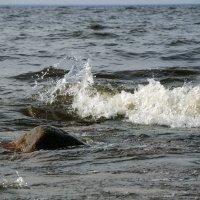 """Балтика """"шепчет и ворчит""""....) :: sv.kaschuk"""