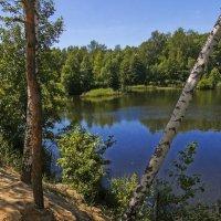Озеро в лесу :: Андрей Дворников