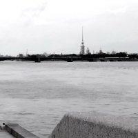 Нева-Невейна :: sv.kaschuk