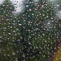 Дождь... :: Александр Богданов