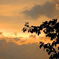 На закате :: Виктория Власова