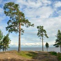 Ладожское озеро :: Александр Силинский
