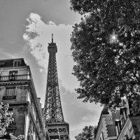 Париж, Париж... :: Alexandr Zykov