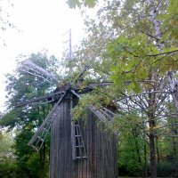 Старая мельница... :: natali