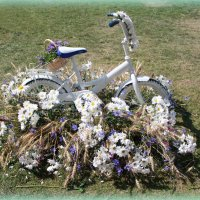 Велосипед в ромашках. :: Larisa