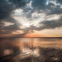 Финский залив :: Ольга