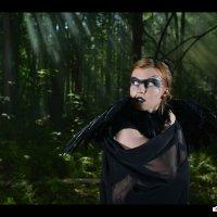 crow... :: Павел Генов