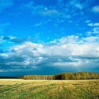 Пейзаж. :: Женя Лузгин