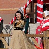 Приветствие рыцарям и зрителям :: Вера Моисеева