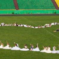 Парад невест 2 :: Павел Савин