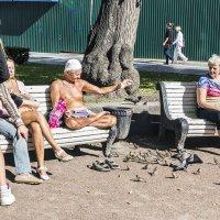 Умиление (кормленье птиц) :: Valerii Ivanov
