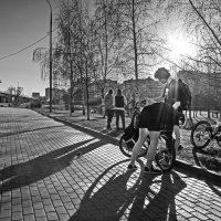 Весна :: Алексей Окунеев