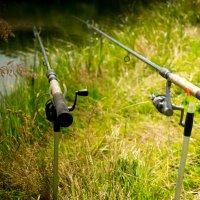 Ловись рыбка.... :: Юлия Славина