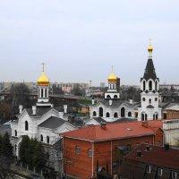 Свято-Никольский монастырь :: Карпухин Сергей