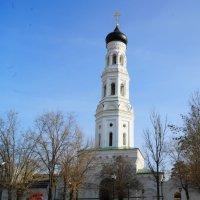 Благовещенский девичий монастырь :: Александр Владимирович Никитенко