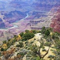Гранд каньон и река Колорадо. :: Барбара