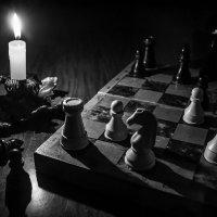 шахматы :: Сергей Гурин