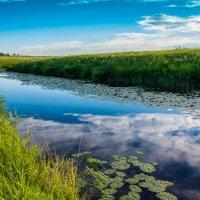 В степи тоже бывает красиво! :: Антон Жирнов