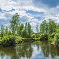 в Сибирской глубинке речушка Кимильтейка :: Светлана
