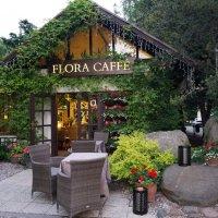 Самое уютное кафе на земле :: Елена Рязанова