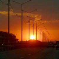 Дорога домой. :: Чария Зоя