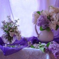 Повинуясь велению мая... :: Валентина Колова