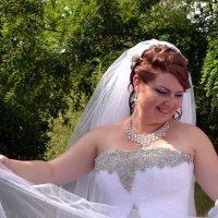 Весёлая невеста :: Владимир Болдырев