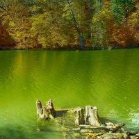 lake :: MIkael Aslanyan