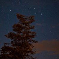 Карпатское небо :: Ольга Пуковецкая