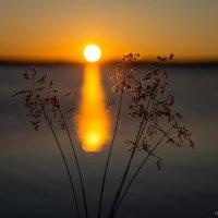 Солнце на старте :: Игорь Матвеев