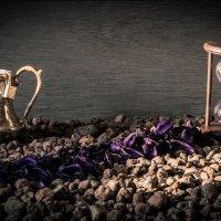 Время собирать камни :: Caша Джус