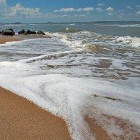 Таманский залив. :: Владимир Питерский