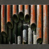 Трубы старого органа :: Станислав Лебединский