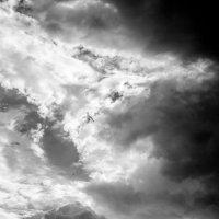 А что вы знаете про облака? :: Света Гончарова
