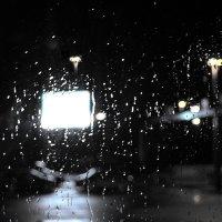 искупаться в дожде :: Лара Leila