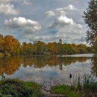 Осенний пейзажик :: Ольга Маркова