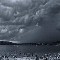 дождь приближался :: Валерий Дворников